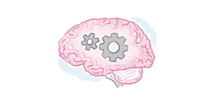 Gehirn mit Zahnrädern Methodik